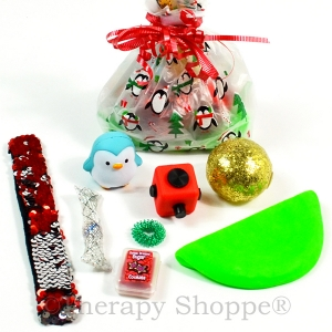 Holiday Fidget Bag for Teens™