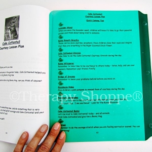 Full Page Reading Guides (Highlighter Sheets)